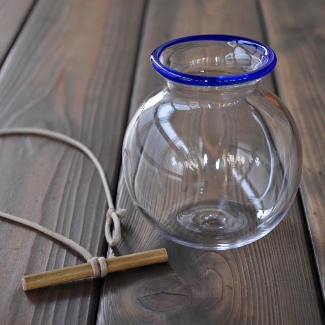 金魚玉つぼみ瑠璃