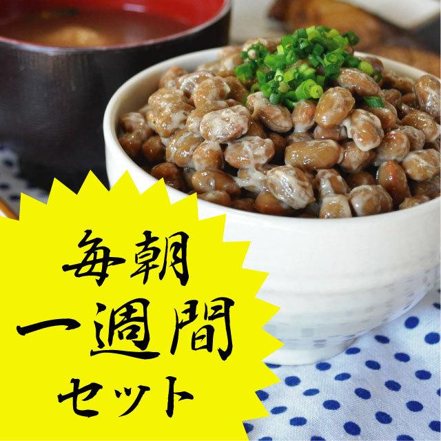 小江戸川越 手造り納豆 毎朝1週間セット