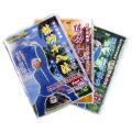 練功十八法セット 太極拳 太極拳用品 太極拳グッズ 武術 カンフー DVD VCD