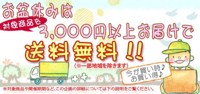 お盆休みは3,000円以上お買い上げで送料無料!