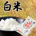 【感動の米】  福井産コシヒカリ白米 5kg <残留農薬ゼロ>