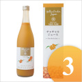 【モンゴル国産】 無添加 チャチャル(沙棘、サジー)ジュース 720ml 3本セット