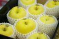 お歳暮はるかりんご販売 岩手県産 純情はるか糖度14度以上通販 形状・蜜入度数は低いですが味は抜群です。小箱 約5玉〜約6玉