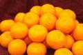 越冬木熟みかん通信販売 JA紀南の紀州一番みかんを販売取寄。約5kg SS〜L 和歌山産