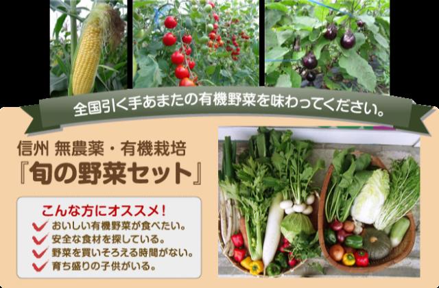 全国引く手あまたの有機野菜を味わってください。信州 無農薬・有機栽培『旬の野菜セット』