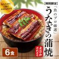 うなぎの蒲焼6食セット