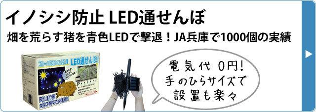 イノシシ対策LED通せんぼ