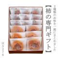 奈良の手土産 柿の専門いしいの柿菓子ギフトセット