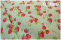 ナチュラルベリー グリーン AT116544-B (約110cm幅×50cm)