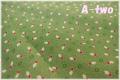 MARCUS Fabrics Gracie's Classics グリーン・レッド 0545-0314 (約110cm幅×50cm)