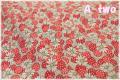WINDHAM FABRICS FEEDSACK マーガレット レッド 41872-1 (約110cm幅×50cm)