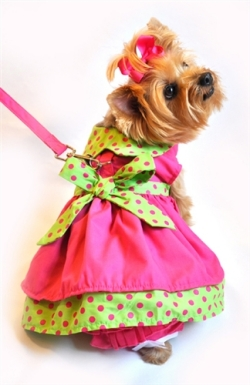 Doggie Design(ドギーデザイン)Hot Pink and Lime Green Polka Dot Dog Dress Set ホット ピンク ポルカドット ドレスセット