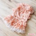 Wooflink(ウーフリンク)ドッグウェア PRINCESS DRESS PEACH プリンセス ドレス ピーチ