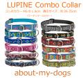 LUPINE中型犬用コンボカラー26-35cm