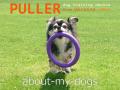 JJ whith PULLER