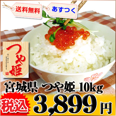 宮城県 1等米 つや姫 白米 5kg×2 平成25年産 ※新、消費税率8%を含む価格です。