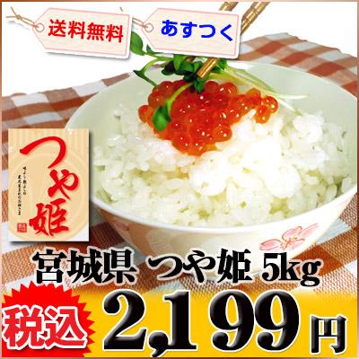 宮城県 1等米 つや姫 白米 5kg 平成25年産 ※新、消費税率8%を含む価格です。