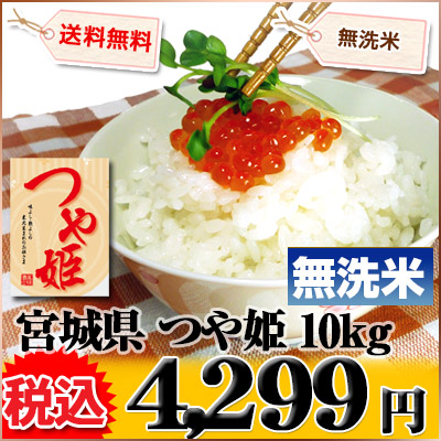 宮城県 無洗米 1等米 つや姫 5kg×2袋 平成25年度産 ※新、消費税率8%を含む価格です。