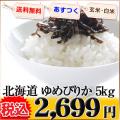 北海道 白米 玄米 1等米 ゆめぴりか 5kg 平成25年度 ※新、消費税率8%を含む価格です。