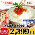 宮城県 無洗米 1等米 つや姫 5kg 平成25年度産 ※新、消費税率8%を含む価格です。