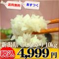 新潟県 1等米 こしひかり 白米 10kg×か5kg×2 平成25年産 ※新、消費税率8%を含む価格です。