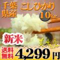 千葉県 新米 白米 1等米 こしひかり 10kg (選べる包装) 平成25年産 【送料無料】北海道・沖縄・一部を除く  ※新、消費税率8%を含む価格です。
