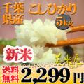 千葉県 新米 白米 1等米 こしひかり 内容量5kg (選べる包装) 平成25年産 【送料無料】北海道・沖縄・一部を除く ※新、消費税率8%を含む価格です。