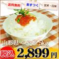 山形県 1等米 つや姫 白米か玄米 5kg 平成25年産 ※新、消費税率8%を含む価格です。