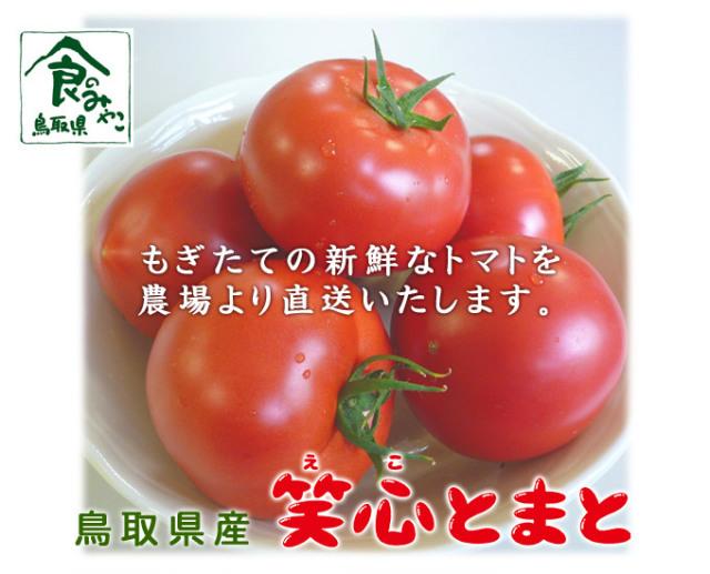 【新鮮】鳥取県産笑心とまと(えことまと)    訳ありトマト4kg詰合せ【格安トマト】
