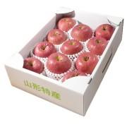 旬の味覚 山形県産 サンふじりんご(秀)約3kg8〜11玉