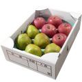 旬の味覚 山形県産 ラ・フランス&サンふじりんご 各5玉詰合せ(秀)約3kg