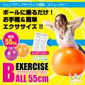 エクササイズボール55cmピンク)/オレンジ)/WB124