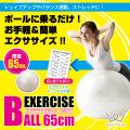 エクササイズボール65cm/WB125