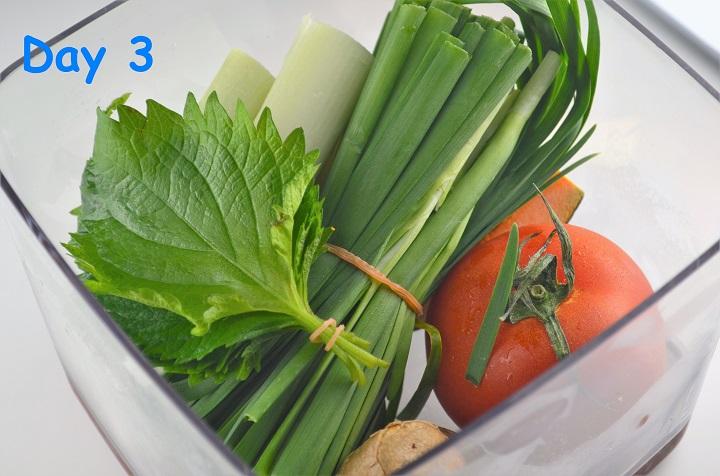 野菜3日目
