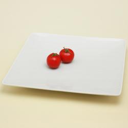 青白磁線彫 角皿|陶房青・和食器