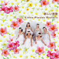 ミュージックCD「リトル・フラワー・シスターズ-新しい言葉/飴色のウクレレ」 No.ah-7