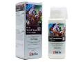 レッドシー リーフファンデーションC 250ml マグネシウム複合剤(コンプリートリーフケアプログラム)