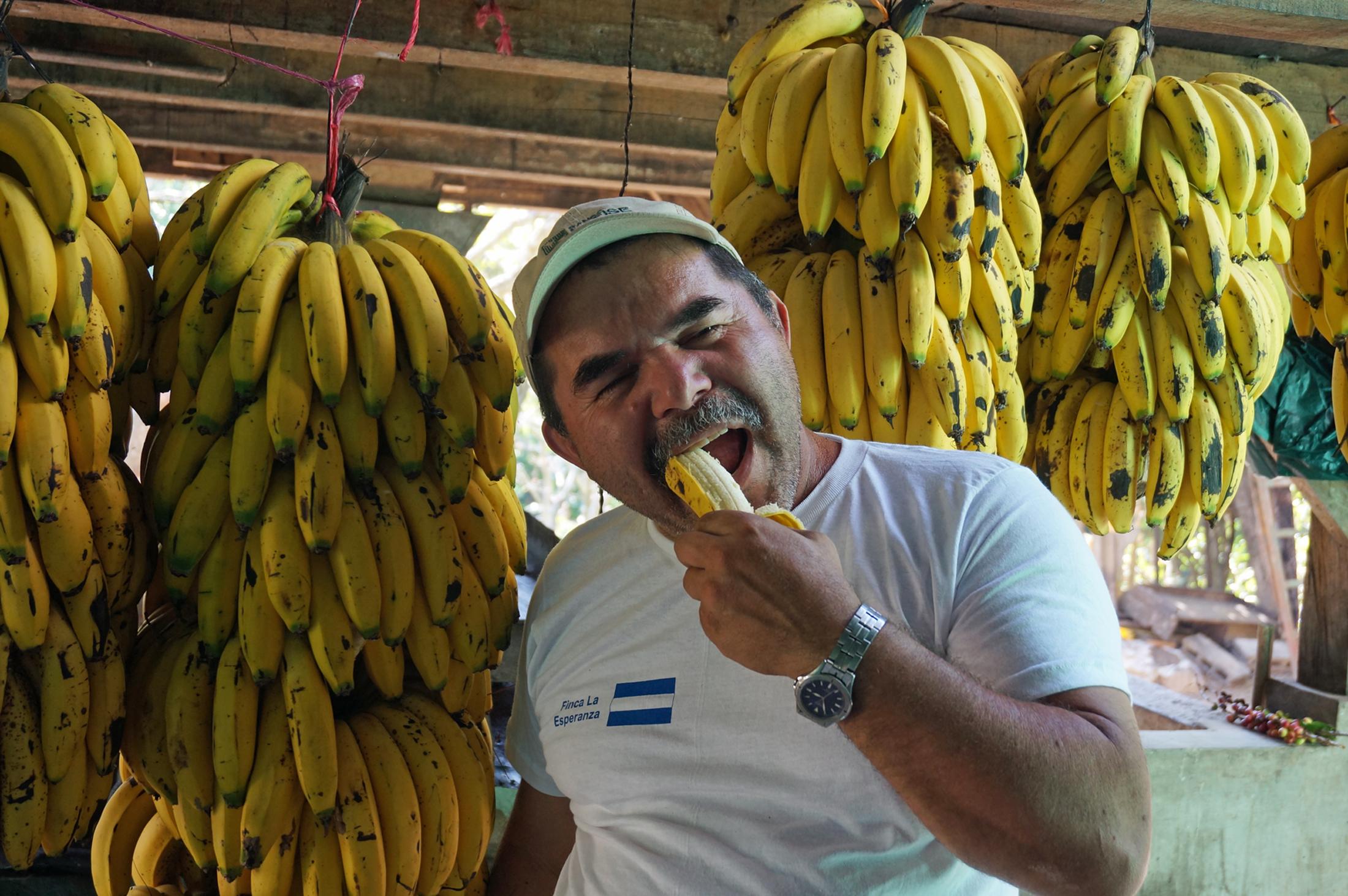 農園主 サラティエル・サバラ