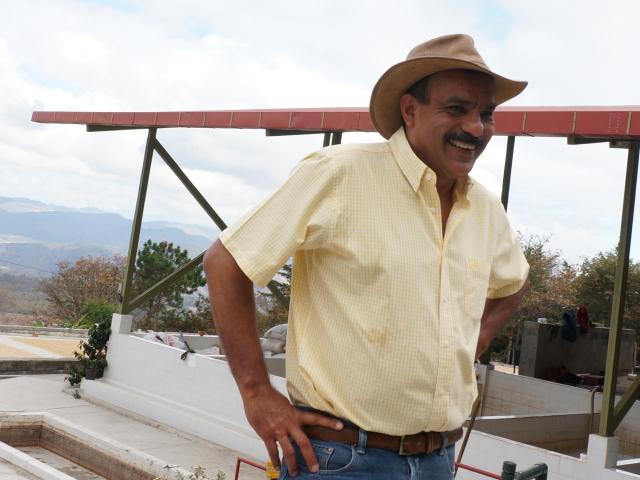 サン・パトリシオ農園500gまとめ買い15%割引対象パック