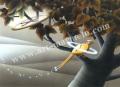 梅川紀美子の版画「無花果の思い出」