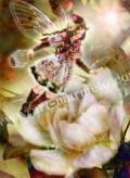横田美晴の版画「G-Gardenia」