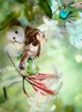 横田美晴の版画「J-Jasmine」