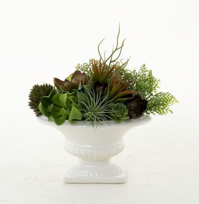 【造花インテリアグリーン】スタイリッシュな多肉植物アレンジF