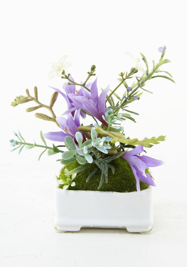 【造花 観葉植物】苔玉・山野草アレンジI(角型花器)