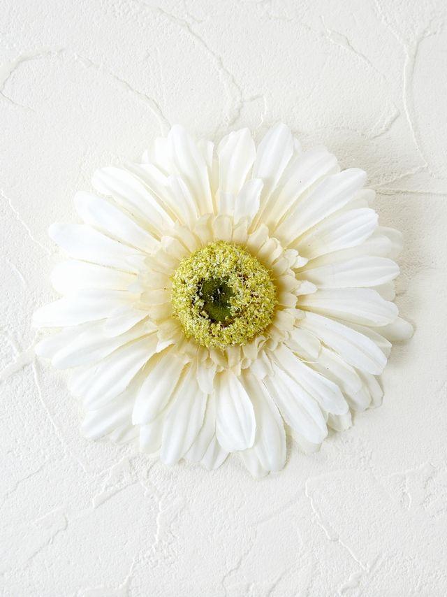 コサージュ&髪飾り(両用タイプ)(タフィーガーベラ/ホワイト)