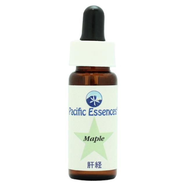 [メープル[Maple]]パシフィックエッセンス/ツリーエッセンス