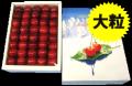 [O-3]【送料無料】大粒!寒河江産  さくらんぼ紅秀峰並び詰め500g