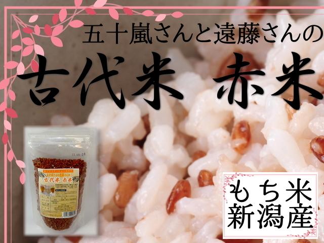 新潟県阿賀野産の古代米 赤米