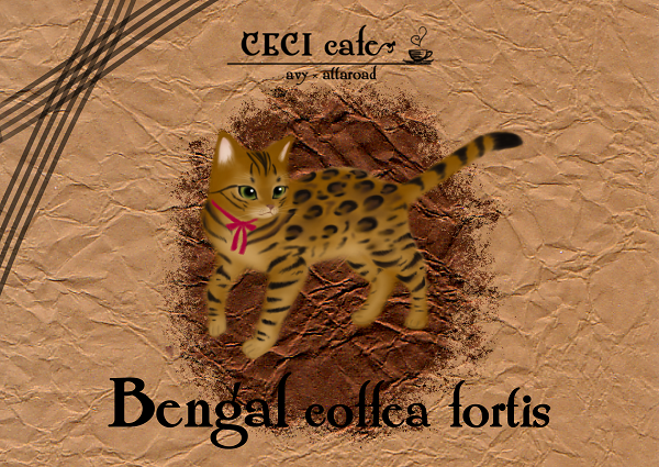 ベンガルコーヒーラベル