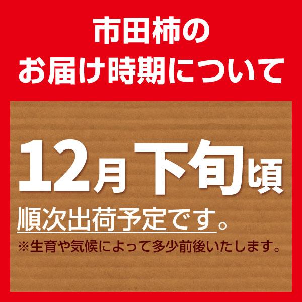 市田柿_04